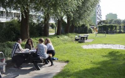 Sommerfest for boligsociale medarbejdere i Aarhus